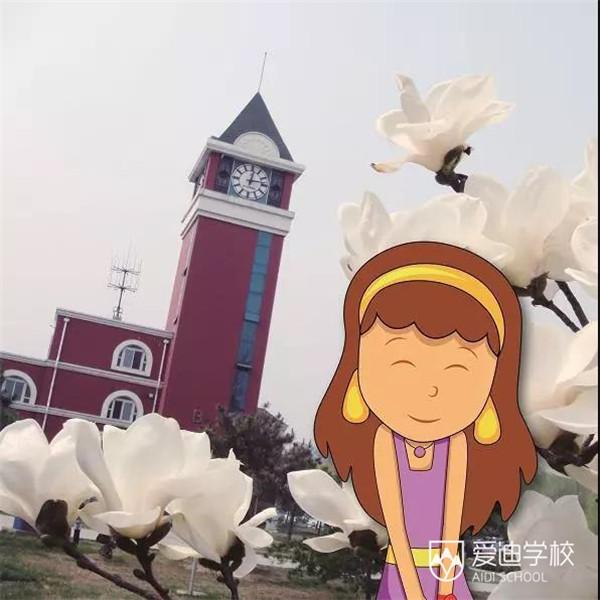 《京城最好玩的春季游园会攻略!》